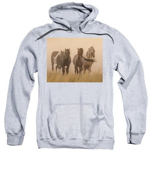 Out Of The Dust Sweatshirt