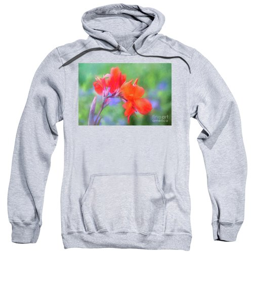 Painted Canna In The Evening Light Sweatshirt