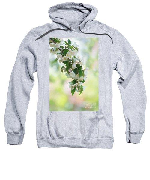 Painted Crabapple Blossom Cascade Sweatshirt