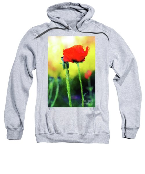 Painted Poppy Abstract Sweatshirt