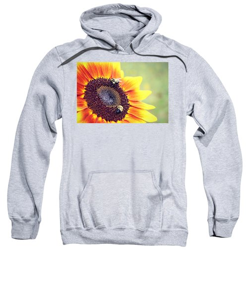 Painted Sun Sweatshirt