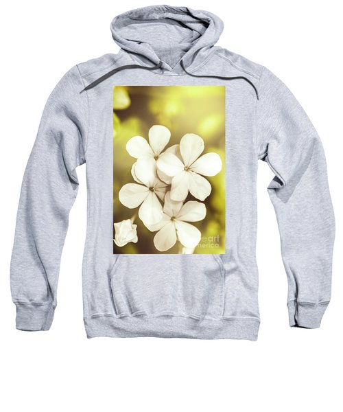 Pale Wildflowers Sweatshirt