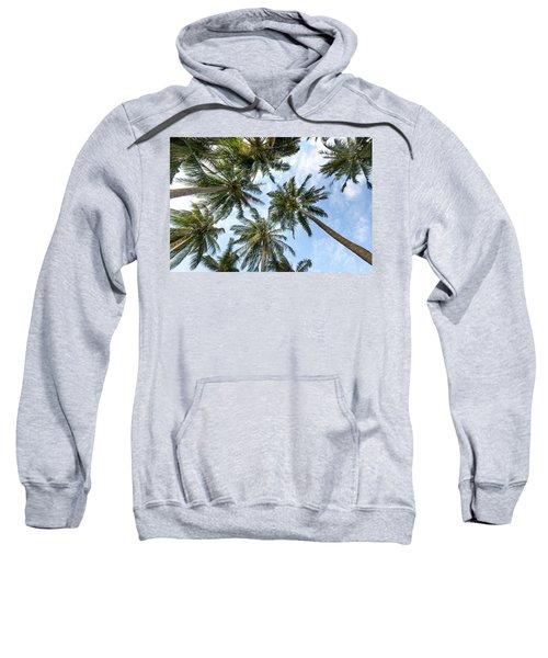 Palms  Beach Sweatshirt