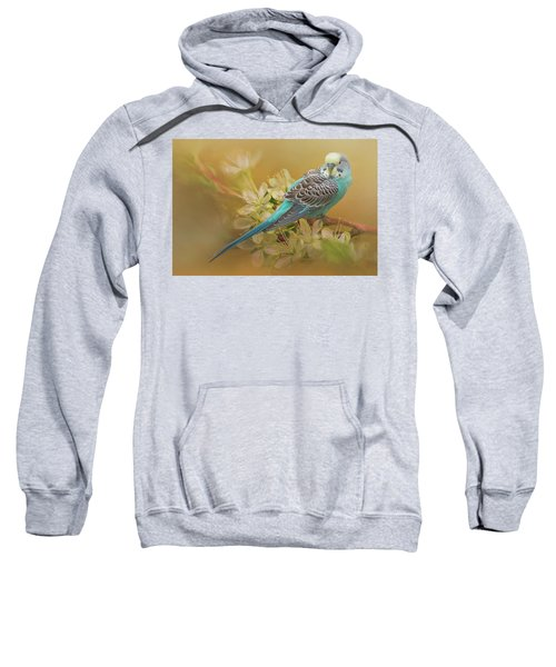 Parakeet Sitting On A Limb Sweatshirt