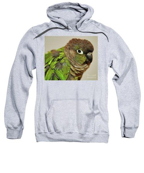 Parker Sweatshirt