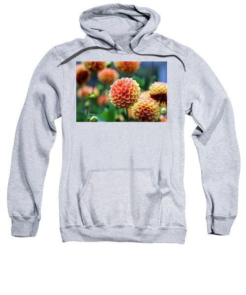 Peach Dahlias Sweatshirt