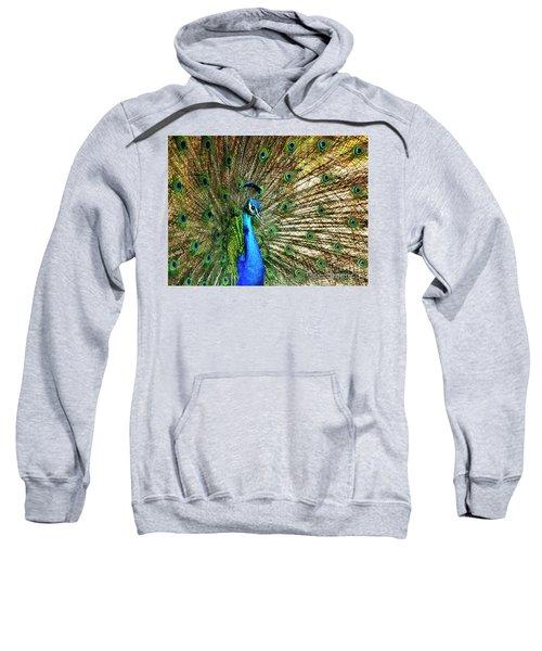 Peacock Full Bloom Sweatshirt