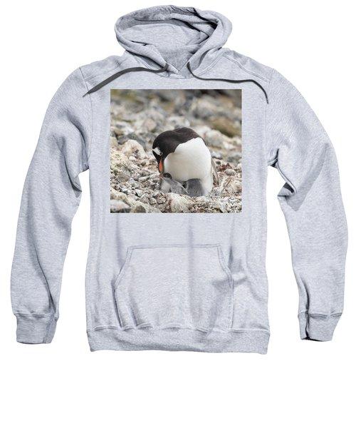 Personality Emerges Early Sweatshirt