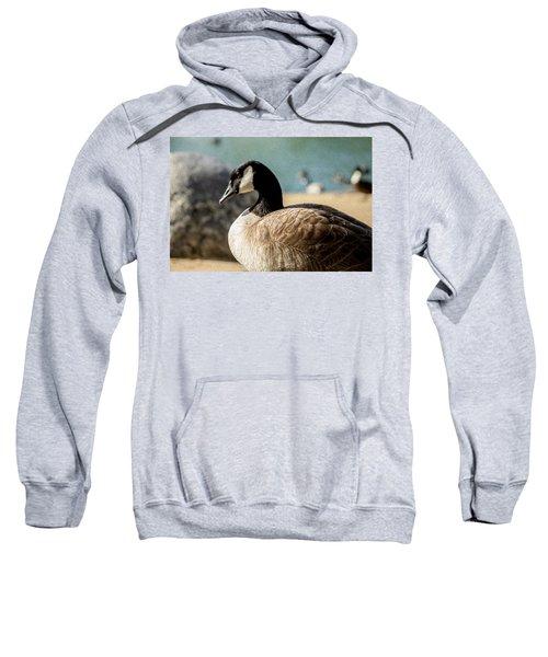 Picturesque Sweatshirt