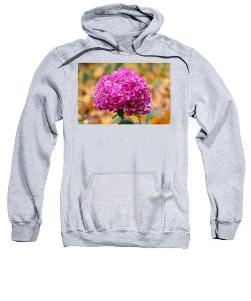 Pink Bouquet  Sweatshirt