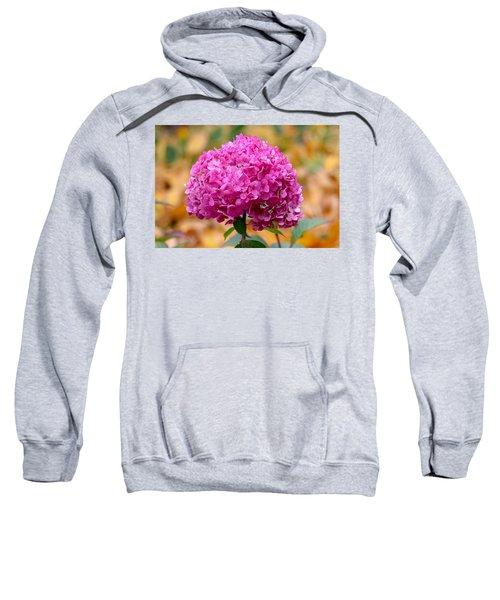 Pink Bouquet  Sweatshirt