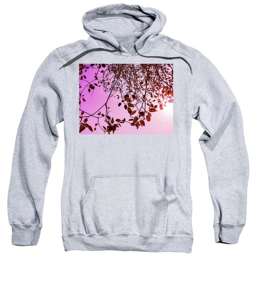 Pink Glow Sweatshirt