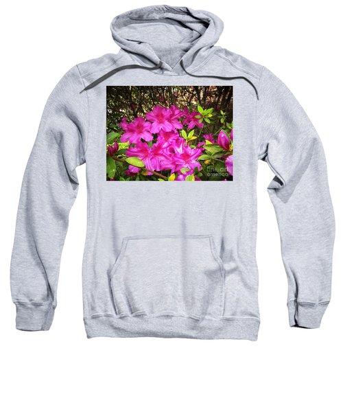 Pink Outside Sweatshirt