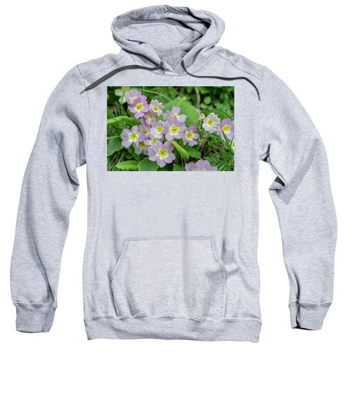 Pink Primroses In Devon Sweatshirt