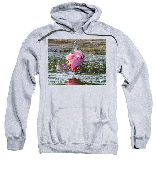Pink Tutu Sweatshirt