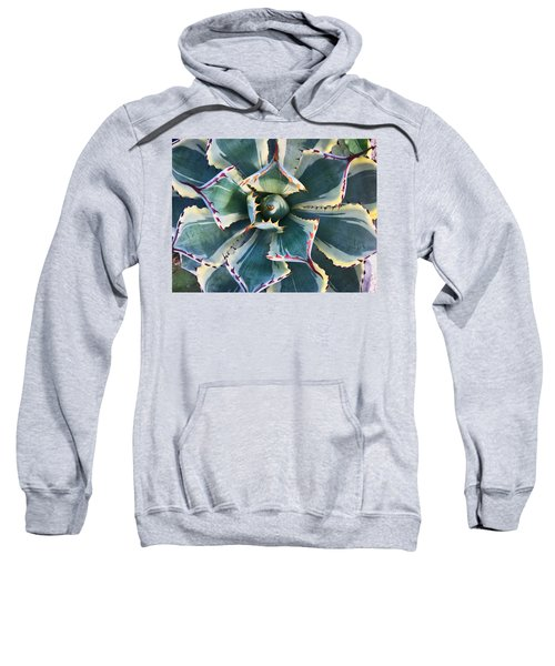 Pinwheel Succulent Sweatshirt