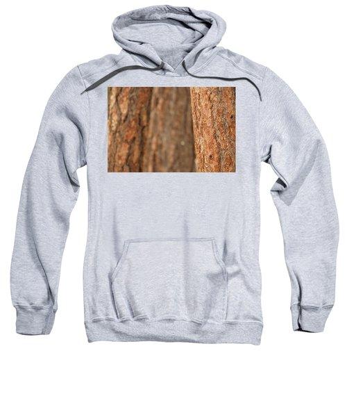 Ponderosa Pine Bark Detail Sweatshirt