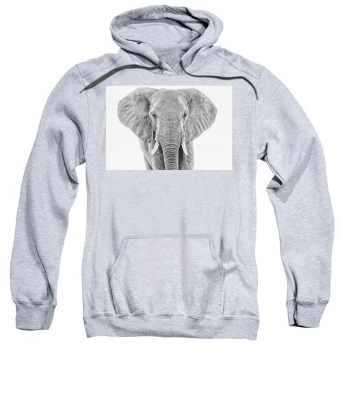 Portrait Of An African Elephant Bull In Monochrome Sweatshirt