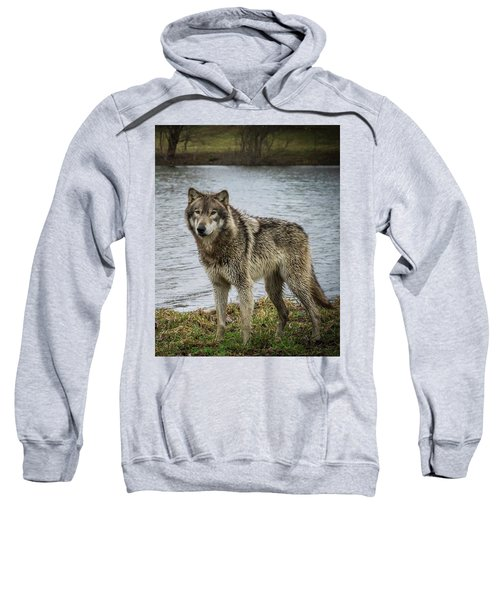 Posing By The Water Sweatshirt