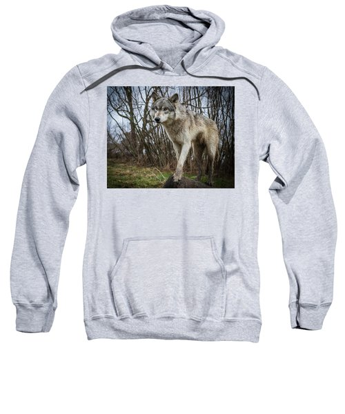 Posing Sweatshirt