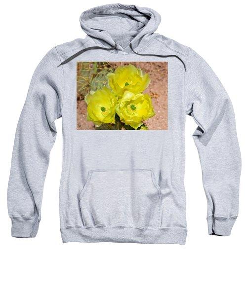 Prickly Pear Cactus Trio Bloom Sweatshirt
