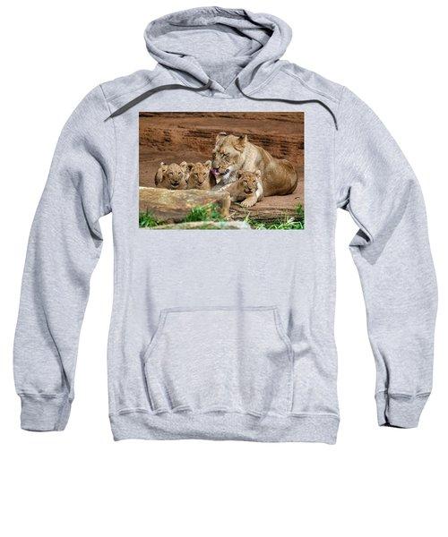 Pride Of The Pride 6114 Sweatshirt