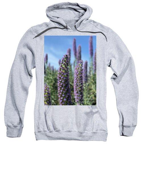Purple Hyssop  Sweatshirt