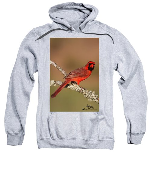 Red And Radiant Sweatshirt