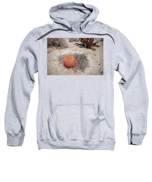 Red Barrel Cactus And Mesquite Sweatshirt