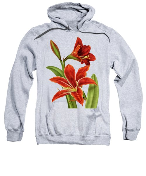 Red Christmas Lily Sweatshirt