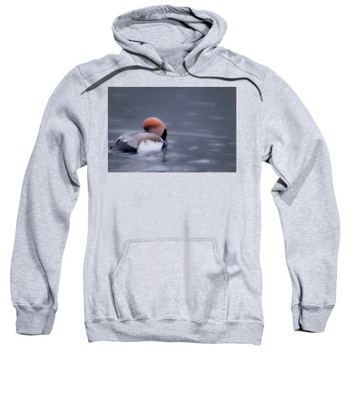 Red Crested Pochard Sweatshirt