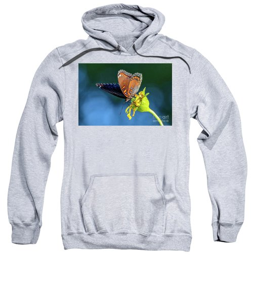 Red-spotted Purple Butterfly Sweatshirt