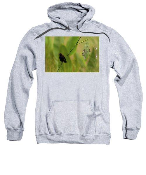 Red-winged Blackbird On Alligator Flag Sweatshirt