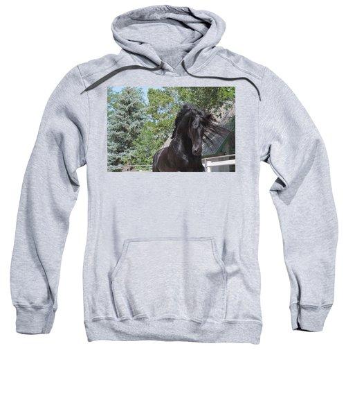 Regal Power Sweatshirt