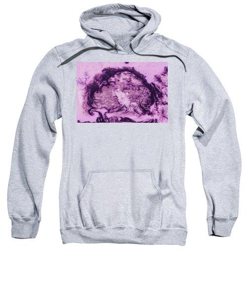 Rhapsody In Purple Sweatshirt