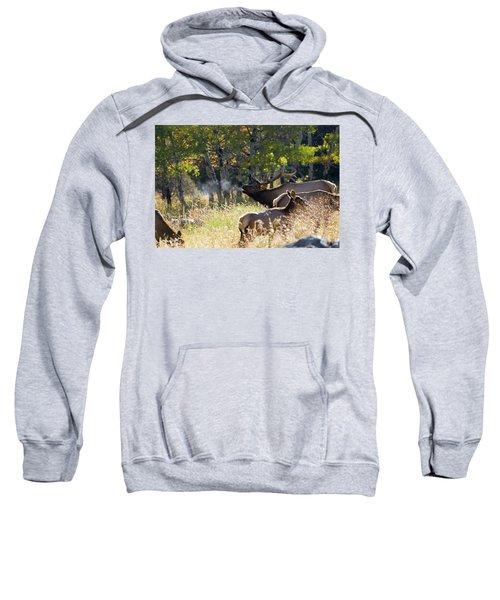 Rocky Mountain Bull Elk Bugeling Sweatshirt