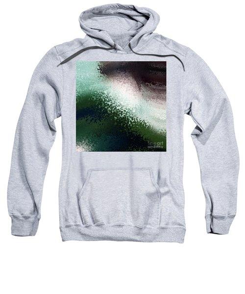 Romans 1 20. Without Excuse Sweatshirt