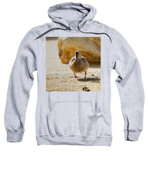 Rumble Sweatshirt