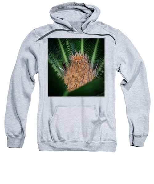 Sago Palm Sweatshirt