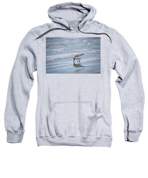 Sanderling Foraging Sweatshirt