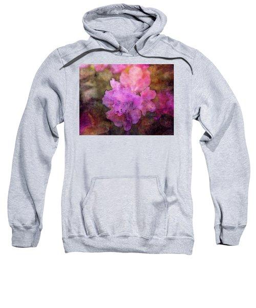 Saturation 9041 Idp_2 Sweatshirt