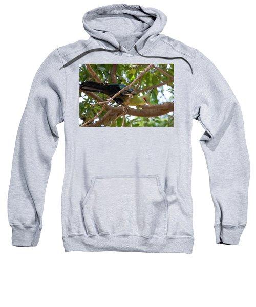 Schalow's Turaco Sweatshirt