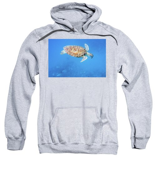 Sea Turtle And Fish Swimming Sweatshirt