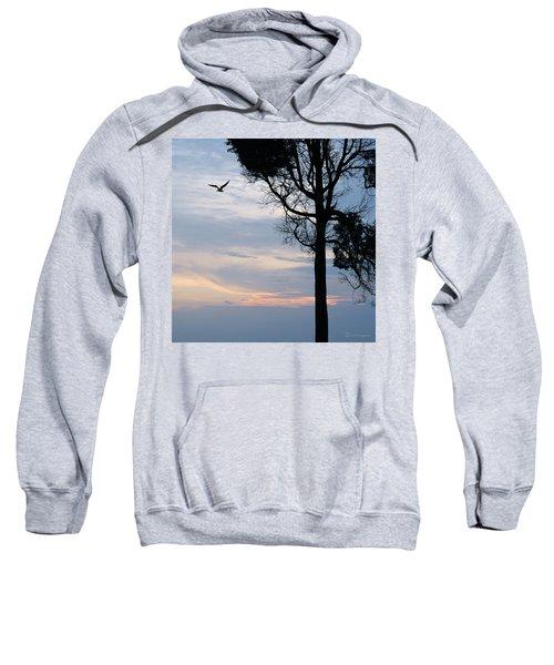 Seagull Sunset At Catawba Sweatshirt