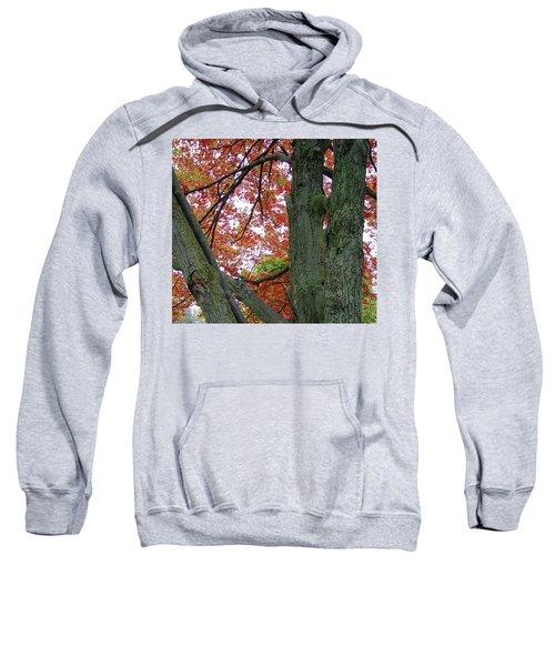 Seeing Autumn Sweatshirt