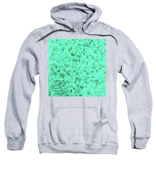 Sequin Dreams 1 Sweatshirt