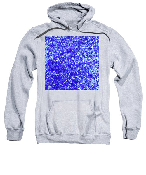 Sequin Dreams 3 Sweatshirt