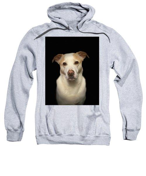 Seriously Snofie Studio Shot Sweatshirt