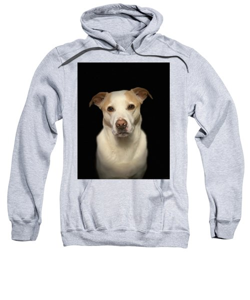 Seriously Snofie Studio Shot Sweatshirt