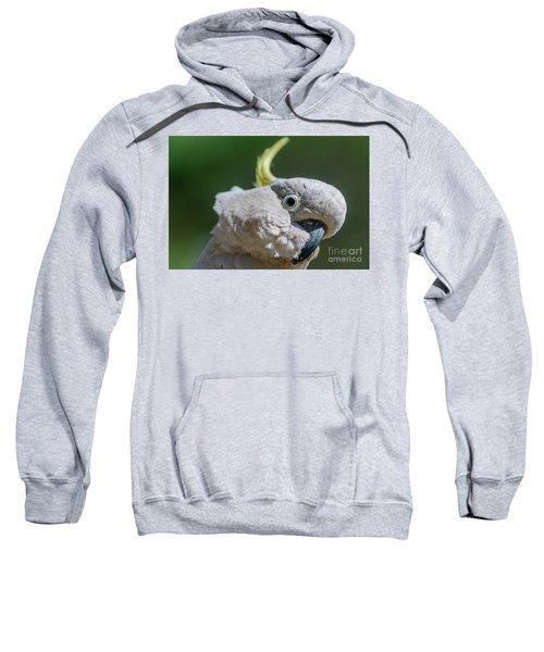 Seriously? Sweatshirt